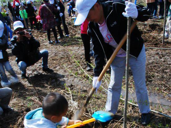 太平人壽黑龍江分公司舉辦植樹活動