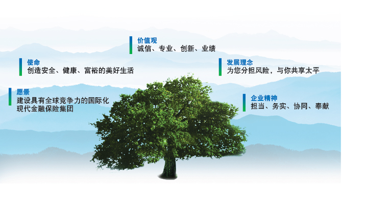 中国太平文化理念