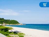 太平畅逸游东南亚与海岛旅行保险