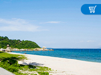 太平暢逸游東南亞與海島旅行保險