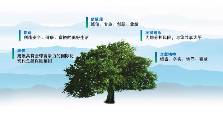中國太平文化理念